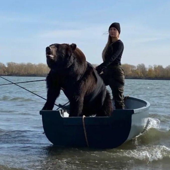 O animal parece até gostar de pescaria