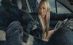 Tanto que ela logo sacou o motivo deToptyzkha gostar tanto dos passeios sobre quatro rodas: os trajetos costumam ter como destino florestas e campos, onde ele pode correr e subir em árvore livrementeBombou no HORA 7!Garotinha leva picada de serpente no rosto durante visita a zoológico