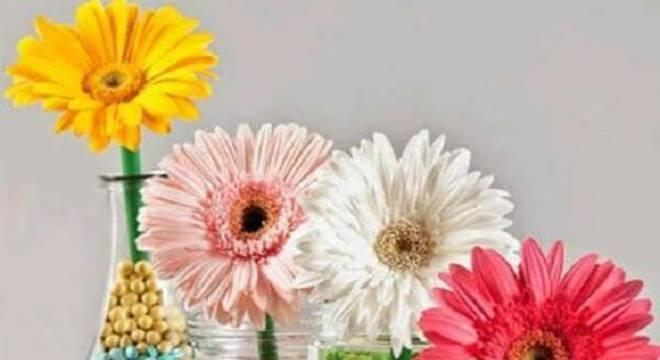 Use potes de vidro transparante para compor os arranjos com flores de gérbera