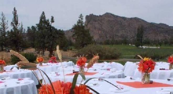 Utilize as flores de gérbera para formar lindos enfeites de centro de mesa