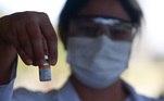 Vacinação em Campinas