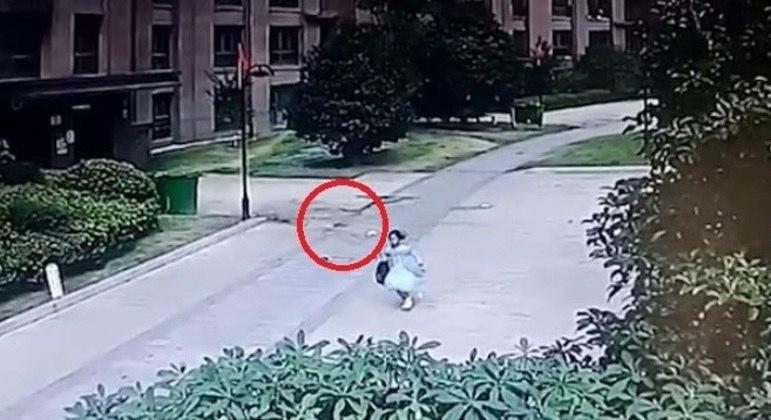 Criança correu em pânico após queda do vaso de plantas