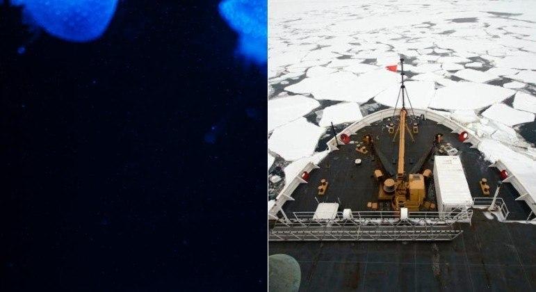 Suposto viajante do tempo divulgou áudio de descoberta feita no oceano profundo em 2023