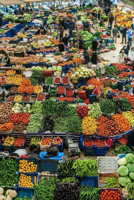 Nossa, mas vegetariano come o quê? Opções não faltam
