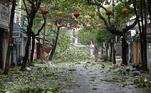 O fenômeno atingiu a costa por volta das 12h, pela hora local (2h de Brasília) e avançou para o noroeste do território, destruindo centenas de casas na província de Quang Ngai, onde duas pessoas morreram ao cair dos telhados das casas em que viviam, quando tentavam se preparar para a chegada da tempestade tropical, segundo o site