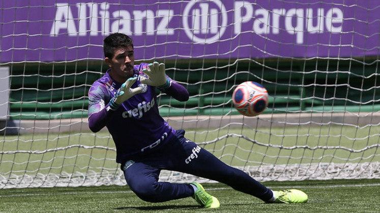 Vinicius Silvestre: goleiro do Palmeiras, 26 anos, contrato até dezembro de 2021. Não recebe chances por conta dos outros arqueiros, Weverton e Jailson