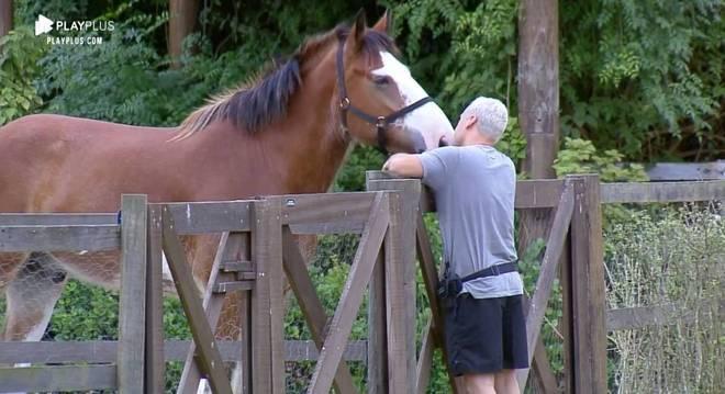 Viny Vieira é um dos peões que mais teve contato com os animais de A Fazenda