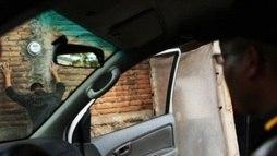 América Central vive onda de violência e é a região com maior índice de homicídios ()