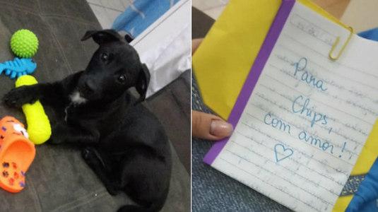 Vizinha faz proposta inusitada para acabar com choro de cachorro (Montagem/Arquivo Pessoal)