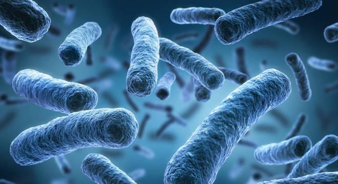 viroses e bacterioses
