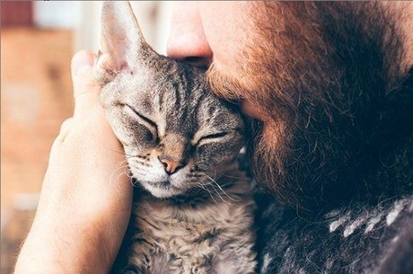 Amor, carinho e alimentação de qualidade são essenciais para que os pets tenham uma vida melhor