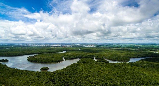 A legislação prevê penas de um a cinco anos para quem destruir áreas de conservação