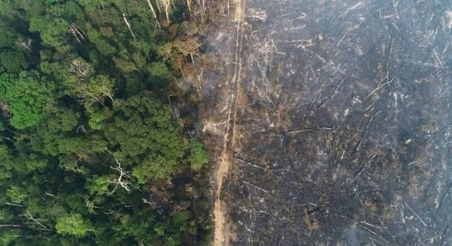 Área desmatada perto de Apuí, Amazonas; em debate, Biden afirmou que 'começaria imediatamente a organizar o hemisfério e o mundo para prover US$ 20 bilhões para o Brasil não queimar mais a Amazônia'