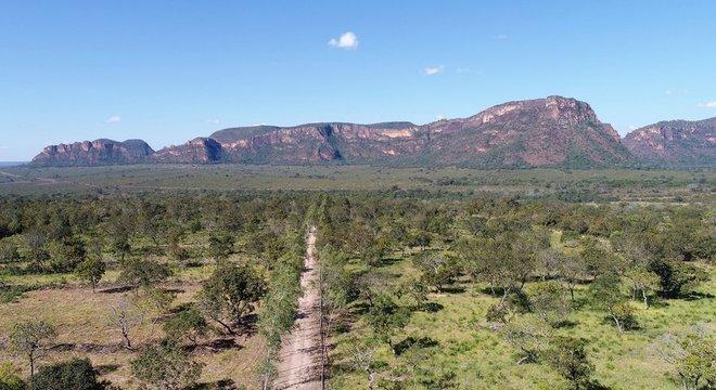 Paisagem do Cerrado, um dos biomas mais importantes e ameaçados do país; para Rittl, a visão dos vários membros do governo sobre o meio ambiente é a mesma
