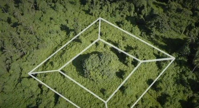 A pirâmide foi engolida pela floresta e arqueólogos estão tentando escavá-la