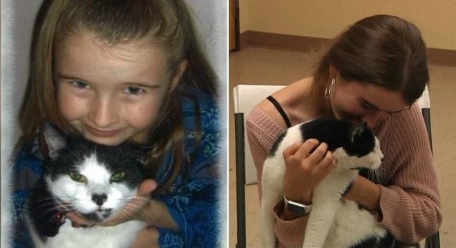 Voluntária em abrigo para animais reencontrou gatinho perdido há três anos