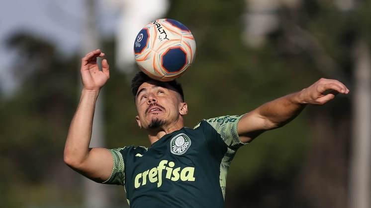 WILLIAN - O atacante alviverde costuma mostrar muito serviço e jogar com muita raça. Com talento e experiência, Willian mostrou que ainda tem muito a dar para o Palmeiras.