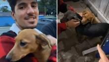 Pais de pet, Yasmin Brunet e Medina adotam duas cachorras