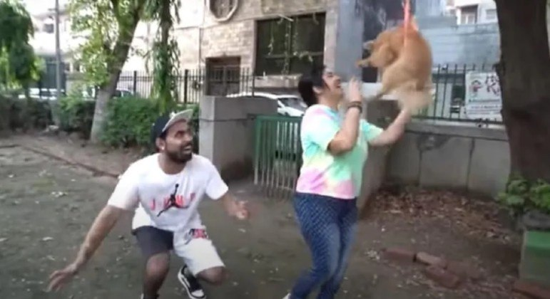 Youtuber indiano foi preso após fazer o cachorro de estimação voar amarrado a balões