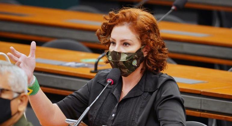 Audiência pública. Dep. Carla Zambelli (PSL - SP)
