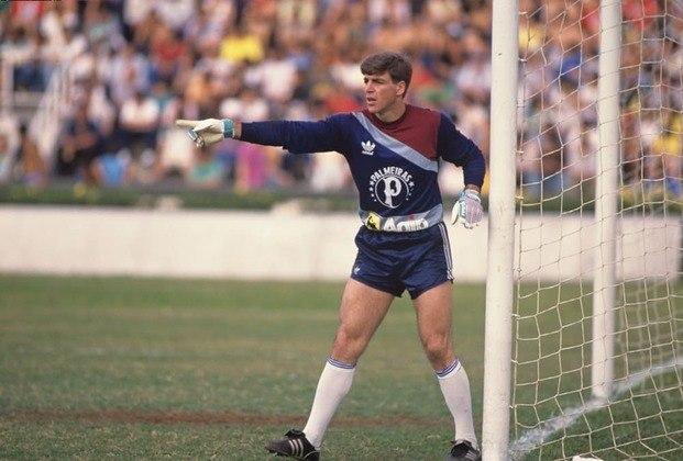 Zetti, porém, foi revelado pelo Palmeiras, onde jogou 98 partidas de 1987 a 1989, segundo o Almanaque do Palmeiras.